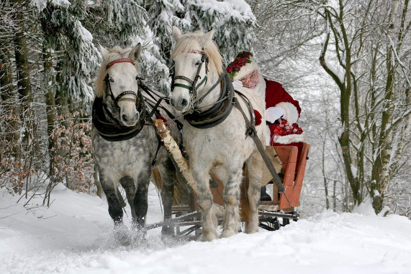 spectacle equestre noel